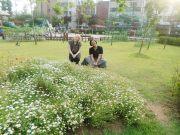 At a pretty park