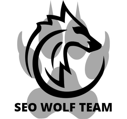 seo-wolf-online-marketing-sevilla