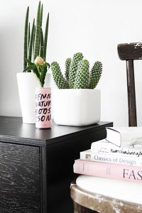 Top 10 Succulent Decorating Ideas - save on crafts
