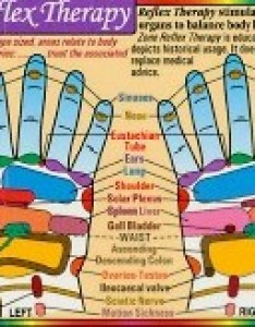 Reflex zone therapy hand wallet card also chart rh ebodylogic