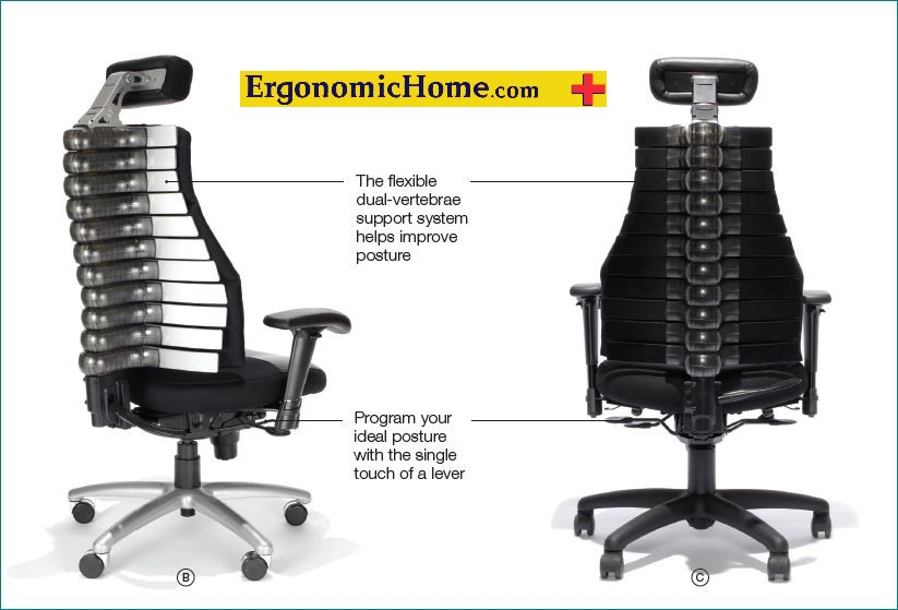 ergonomic chair kneeling cars lounge verte lumbar support by rfm #22011 | adjustable back with headrest taa ...