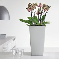 Office Planters & Modern Indoor Planters | Planters Unlimited