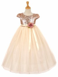 Blush Pink Short Sleeve Sequins & Tulle Dress