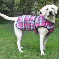 Winter Coats For Large Breed Dogs - Tradingbasis