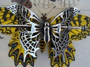 butterfly hair accessory oberon