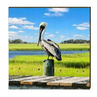 Pelican on Piking Beach Wall Art for sale - Cottage & Bungalow