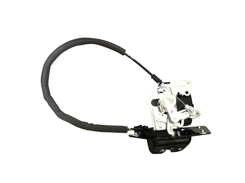 Tailgate Latch with Actuator Motor #4589131AG