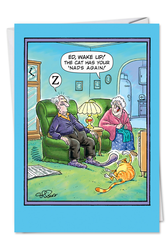 Cat Has Nads Funny Birthday Card & Nobleworkscards Com
