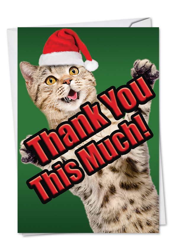 Cat Big Thanks Stylish Christmas Thank You Card