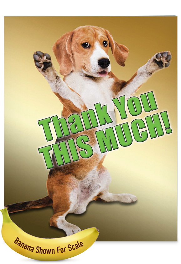 Thank You Dog Funny : thank, funny, Hysterical, Thank, Large, Greeting