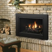 Kingsman Direct Vent Fireplace Insert with Blower - IDV43 ...