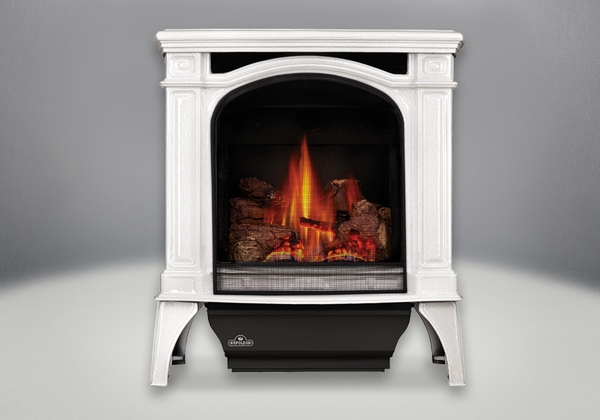 Napoleon Bayfield Direct Vent Cast Iron Gas Stove Gds25n