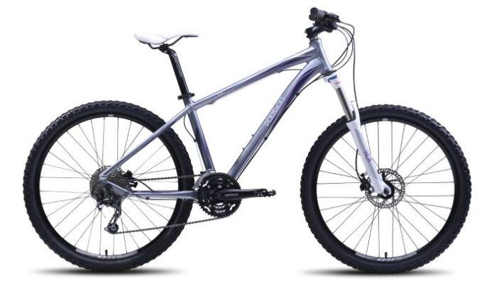 Sepeda Gunung Polygon Cleo 4.0