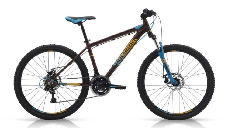Sepeda Gunung Polygon Raja 5