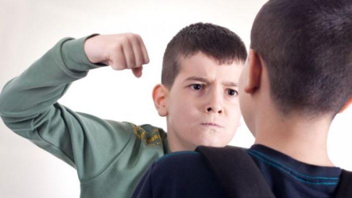 Jenis jenis Bullying