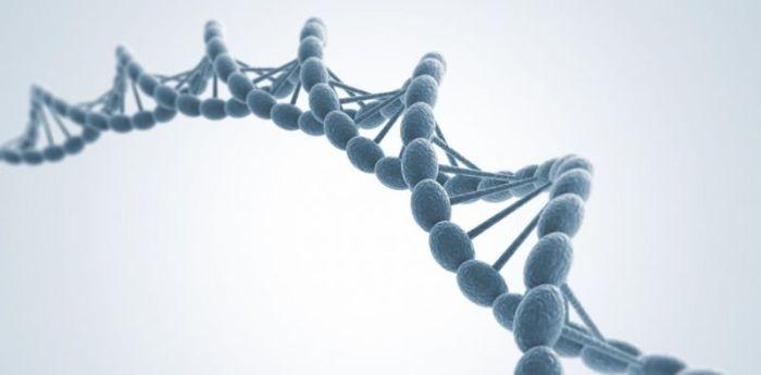 Teknik-teknik Bioteknologi