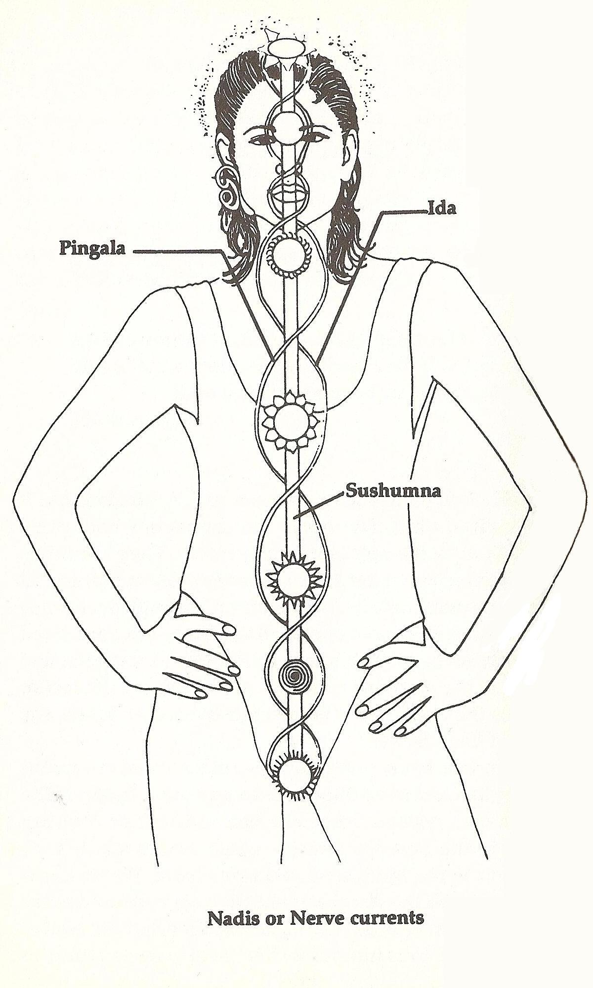 The Nadis And Planetary Healing