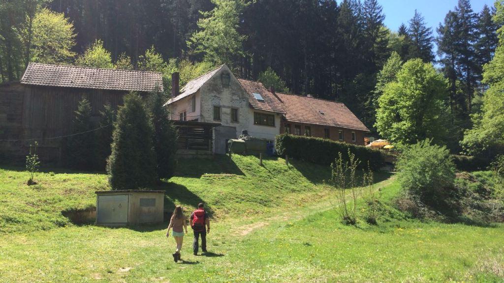 Drachenfels Pfalz