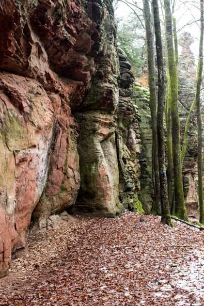 Hahnfelstour Pfalz