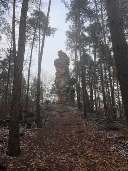Napoleonsteig Pfalz