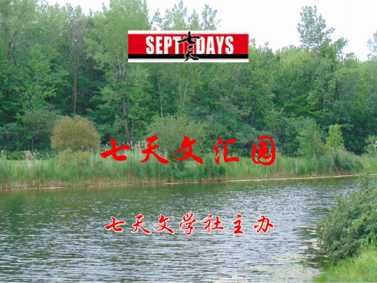 七天文汇园(8月27日)