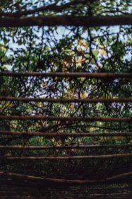 millie-dan-petersham-nurseries-0278