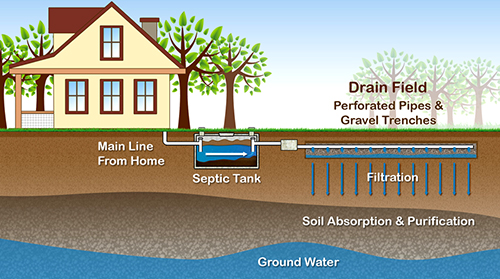 septic and drainfield