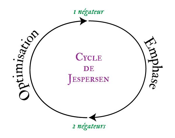 Le cycle de Jespersen