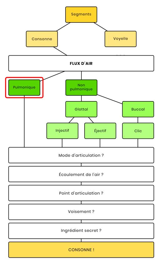 Schéma des modes d'articulation mettant en valeur le flux d'air pulmonique