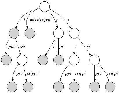Suffix Tree — SeqAn 2.0.2 documentation