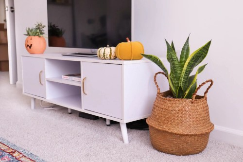 Tv Stand with Pumpkins. Next to it is a basket with a Snake Plant with it.
