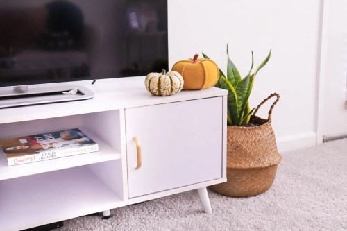 Tv Stand with two pumpkins on top and a snake plant next to it