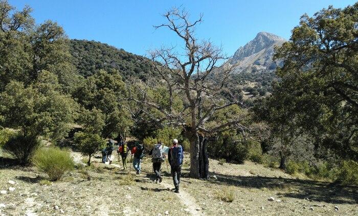 Sierra Magina Jaen Andalucia senderismo SERAC COMPAÑÍA DE GUÍAS