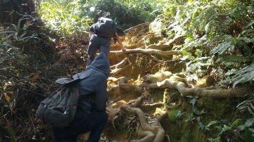 Jalur Pendakian Gunung Pulosari : Yang terdiri dari batuan dan akar pohon serta tanah yang agak licin.