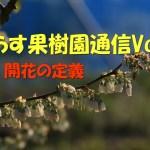 せらす果樹園通信Vol.3 開花の定義
