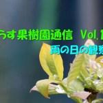せらす果樹園通信 Vol.14 雨の日の観察