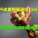 せらす果樹園通信 Vol.30 開花時期と収穫時期の関連性