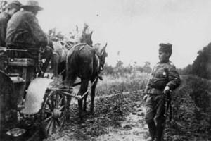 Ратна фотографија Момчила Гаврића из 1914 | Wartime photograph from 1914 with Momčilo Gavrić.