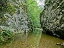 У монографији НП Ђердап, за Брњицу се каже да је најдужа река која њиме тече, чак неких 24 km. Ајд' што то није тачно, већ што ничег о кањону даље нема...