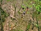 Настављамо даље, преко једног шумског потока који има...