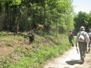 Зелена оаза на путу за Близну и крава у сопственом аранжману