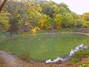 Поповичко језеро