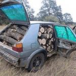 Serbian wood