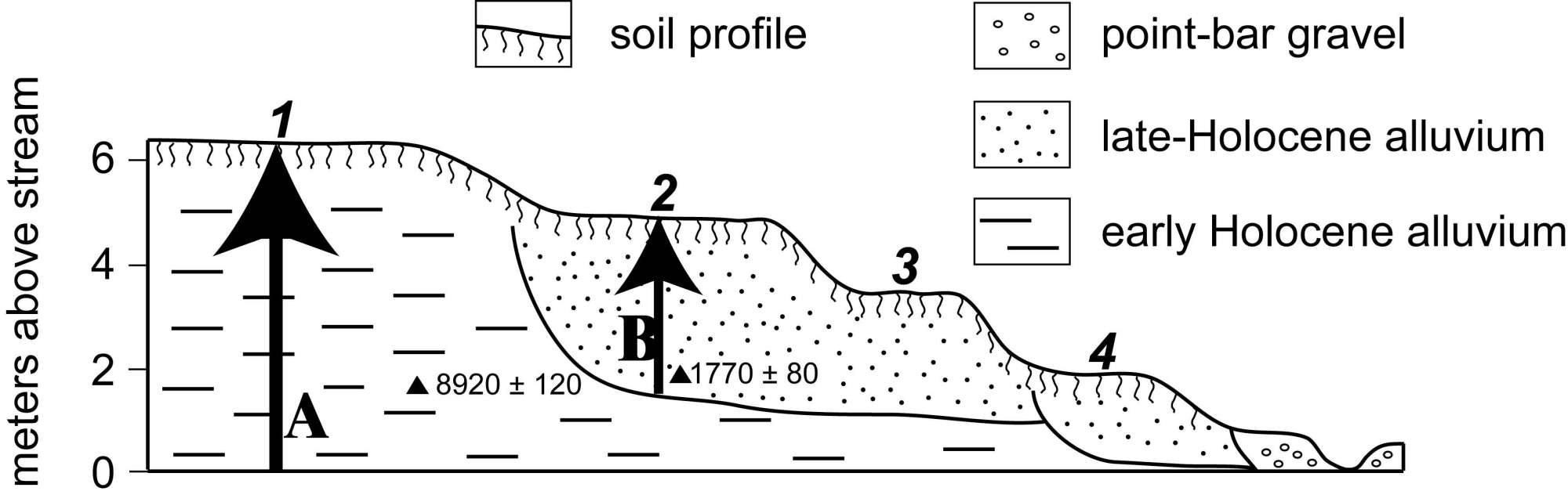 hight resolution of schematic cross section of terraces and terrace fills along lower kings creek at the konza prairie biological station only terraces numbered 1 and 2 are