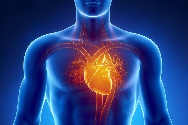 Если сердце колит как иголкой. Колит в области сердца: возможные причины, болезни, неотложная помощь