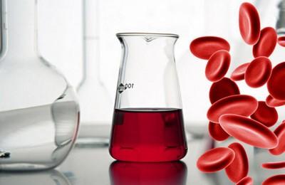 низкий белок в крови