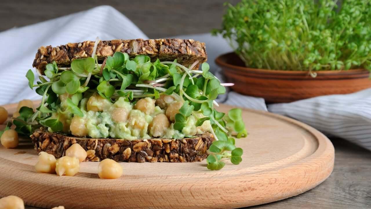 сандвич серидка микрорастения