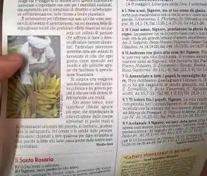 """Anche """"La Domenica"""" si è venduta a Expo 2015"""