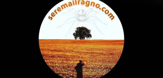 La filosofia del ragno: minimalismo, anti nichilismo e recupero dell'essenziale