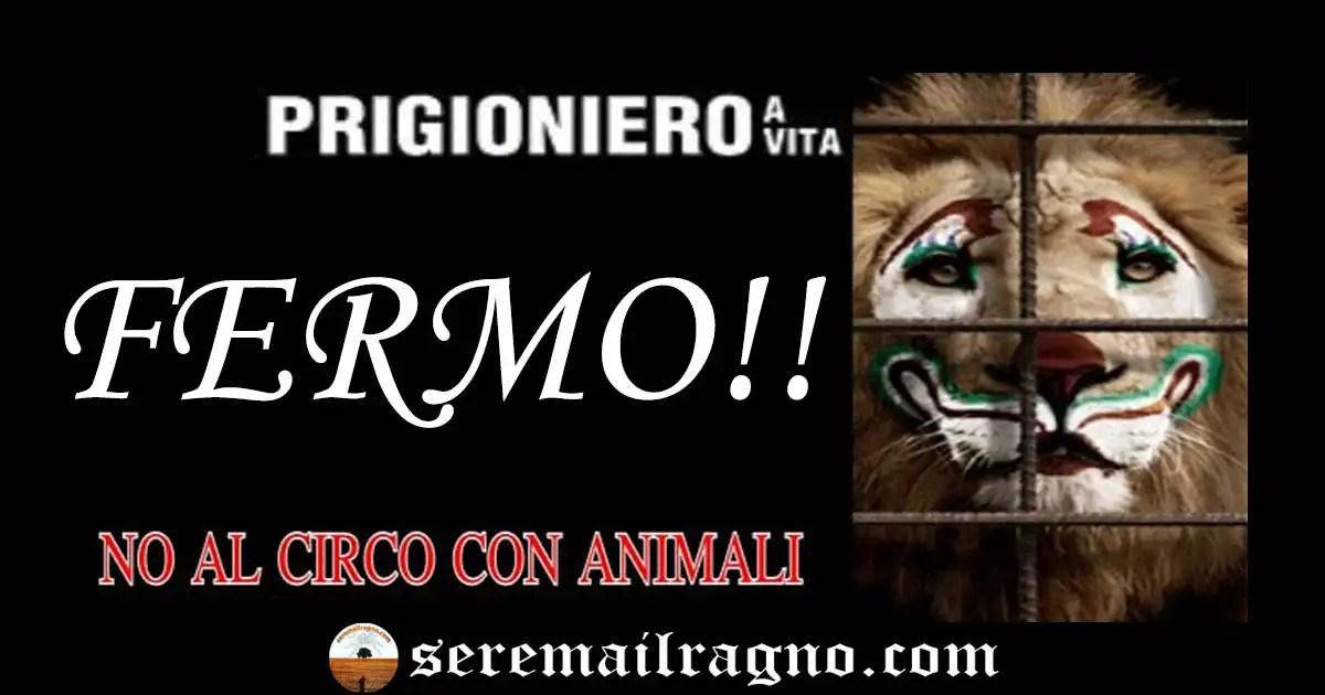 Boicottiamo il circo con animali di Campiglione di Fermo